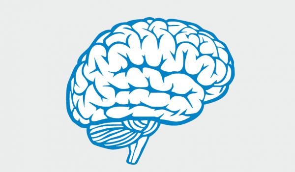 3 claves para entender los mecanismos de defensa que pone en marcha el cerebro ante cualquier agresión para salvaguardar nuestra integridad