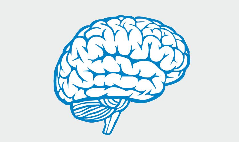 En este momento estás viendo 3 claves para entender los mecanismos de defensa que pone en marcha el cerebro ante cualquier agresión para salvaguardar nuestra integridad